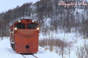 雪372レ(=DE15-2511)