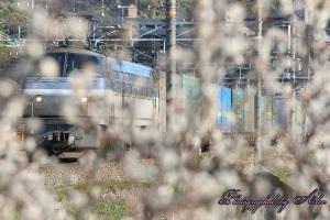 1055レ(=EF66-125牽引)