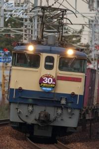 75レ(=EF65-2139(JR貨物30周年HM付)牽引)