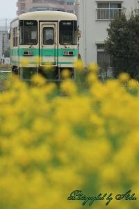 紀州鉄道KR301(元信楽高原鐵道SKR301)