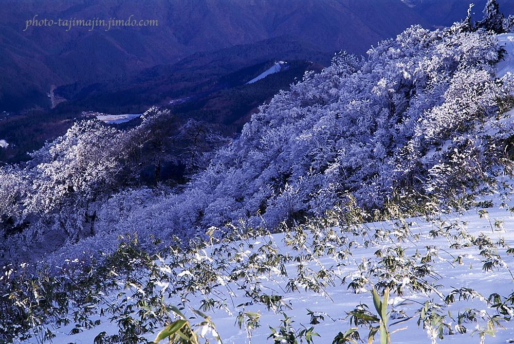 氷ノ山-14