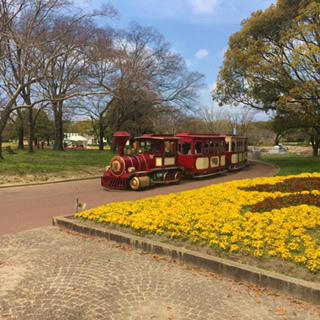 汽車と花expoち