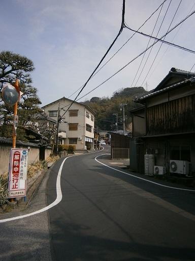 P3190019.jpg