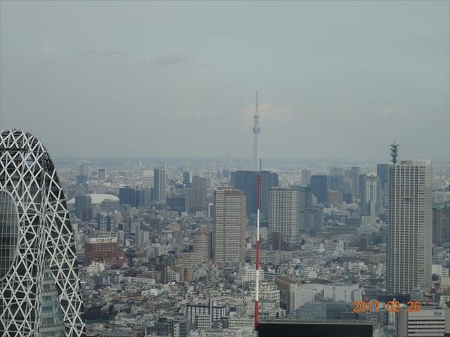 26日新宿 7