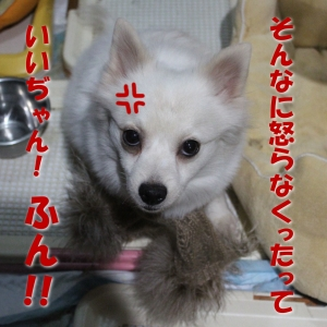 7-6_201703261514218e0.jpg
