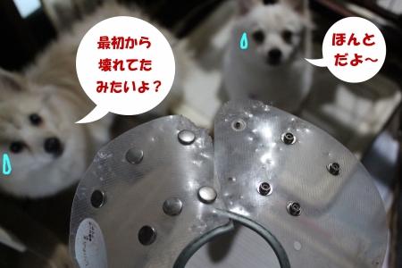9-0_201703261109288c9.jpg