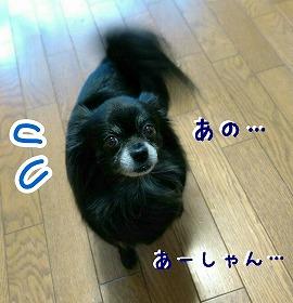 2017-03-26_160912_clr_exif.jpg