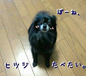 2017-03-26_161448.jpg
