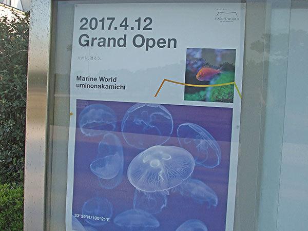 マリンワールド海の中道~グランドオープン!