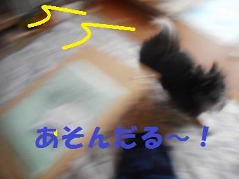 201704252.jpg