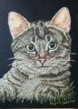 Miyus Chalk Art