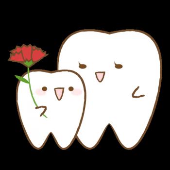 みんなの歯の相談窓口3