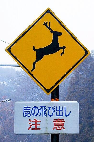 鹿の交通事故を防ぐために設置された標識