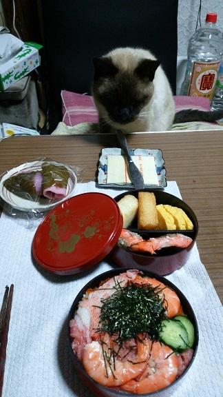 チラシ寿司とクー