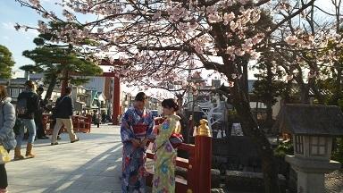 鎌倉の早春2