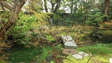 大佛次郎茶亭の庭2
