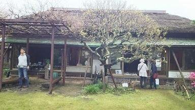 大佛茶亭の庭1