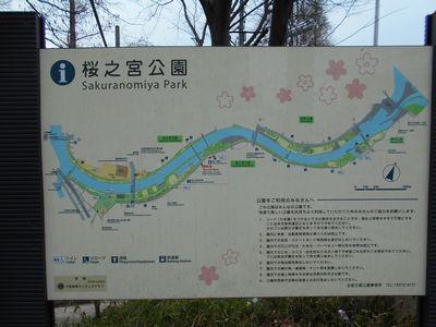 170325_桜之宮公園