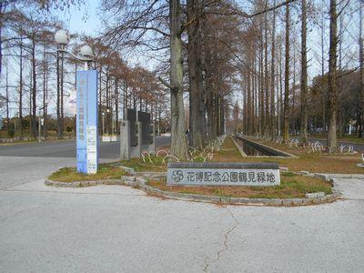 170326_鶴見緑地