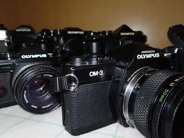 P4090005.jpg