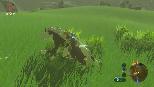 【ゼルダの伝説 ブレスオブザワイルド】 馬の入手方法 双子馬宿の場所 【BotW 攻略】