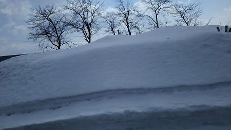 雪2メートルくらい