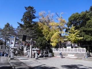 2015年11月16日 玉前神社8