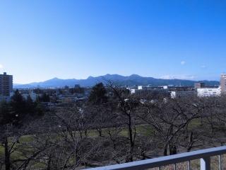2015年11月29日 櫻山神社13