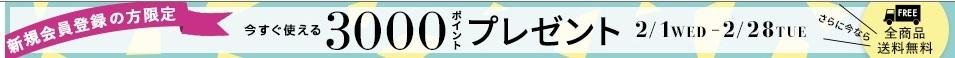 sanyo 3000円ポイント 新規登録