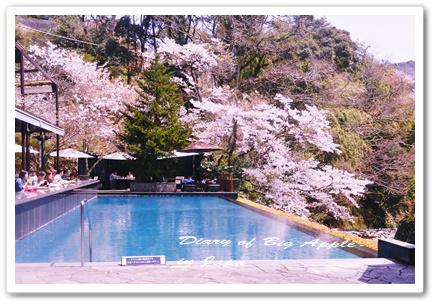 伊豆山中の素晴らしいホテル