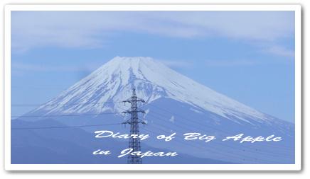 富士山を望んで