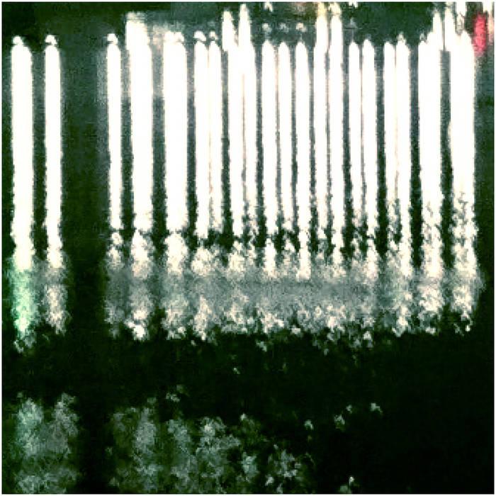 album01.jpg