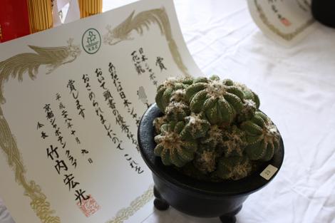 20161009花籠