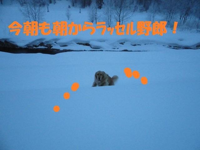 CIMG4284_P.jpg
