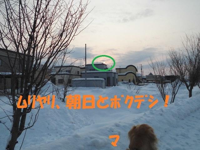 CIMG4316_P.jpg