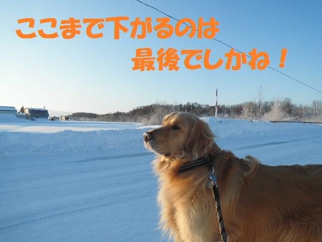 CIMG4351_P.jpg