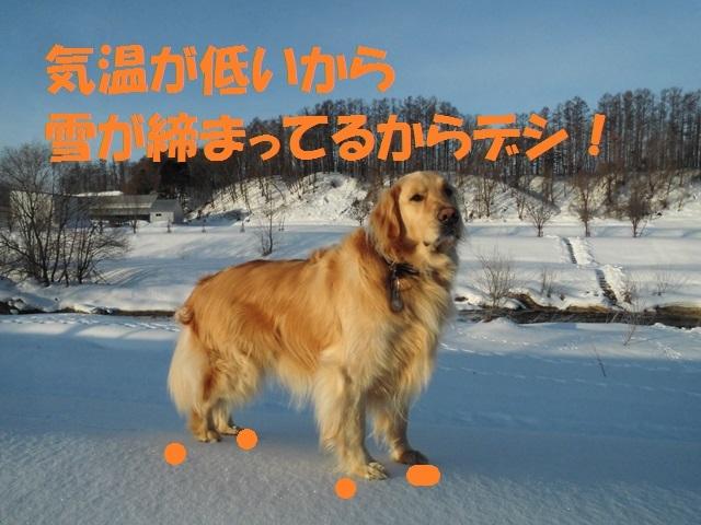 CIMG4472_P.jpg