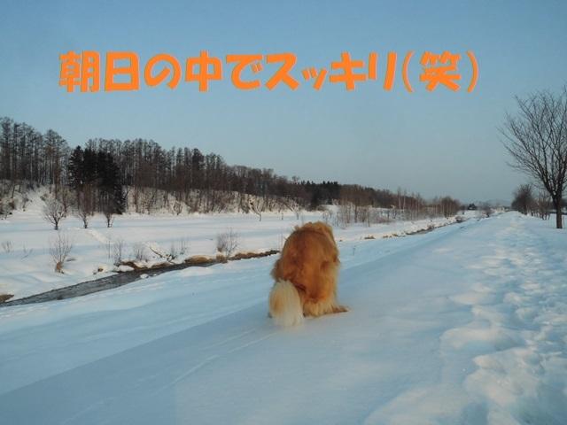 CIMG4475_P.jpg