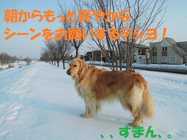 CIMG4479_P.jpg