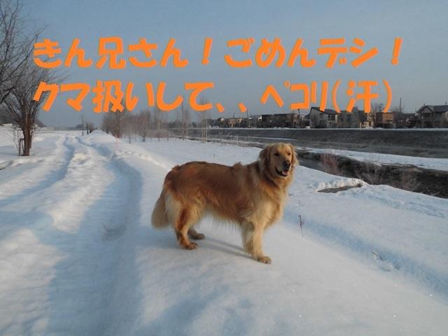 CIMG4600_P.jpg