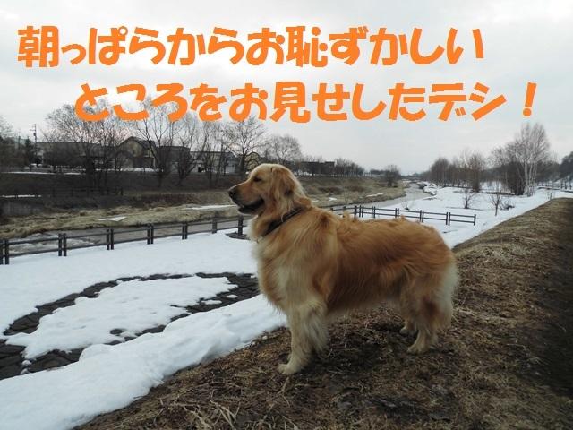 CIMG4628_P.jpg