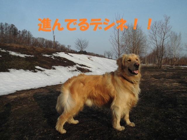 CIMG4640_P.jpg
