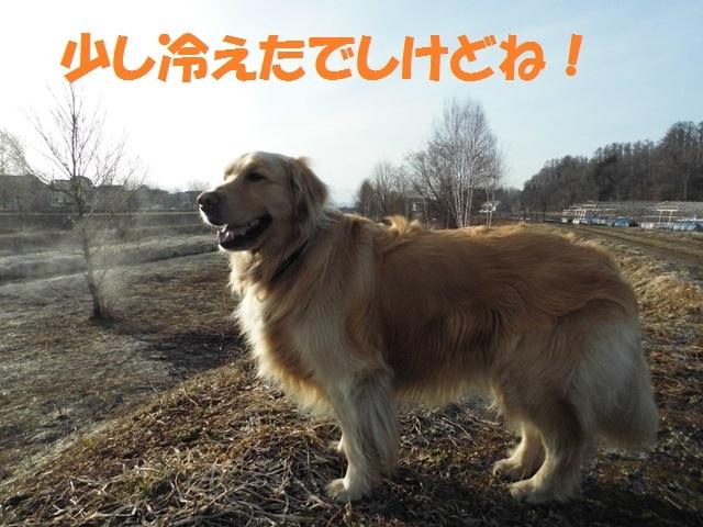 CIMG4671_P.jpg
