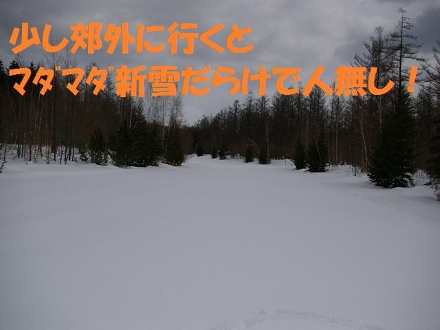 IMGP1402_P.jpg