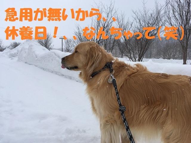 IMG_1692_P.jpg