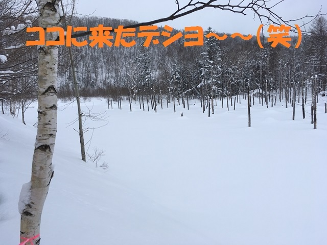 IMG_1764_P.jpg