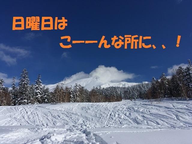 IMG_2129_P.jpg