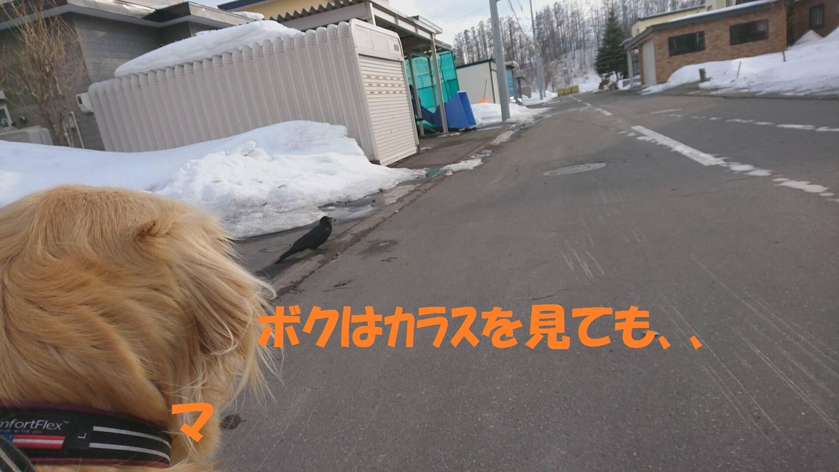 IMG_2402.jpg