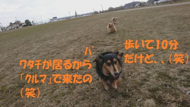 IMG_2646.jpg