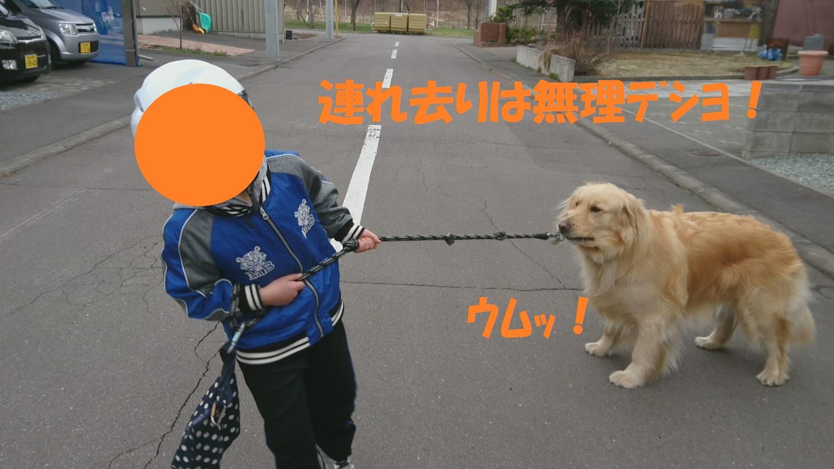 IMG_2900.jpg